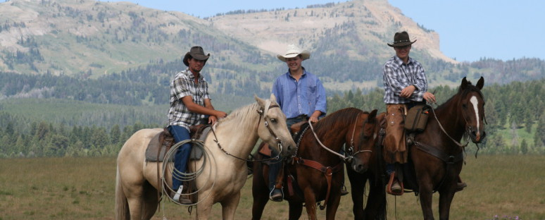 Yellowstone Horses- answers to frequently asked questions about our